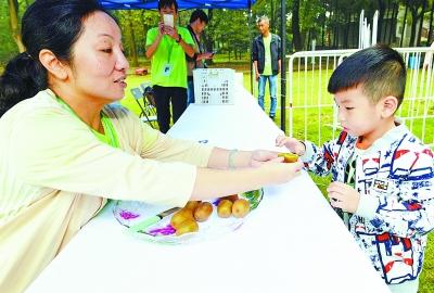 """""""世界最好吃的猕猴桃""""在武汉造出 可以连皮一起吃"""