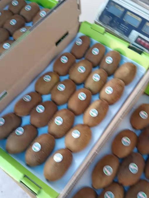 猕猴桃鲜果大量销售