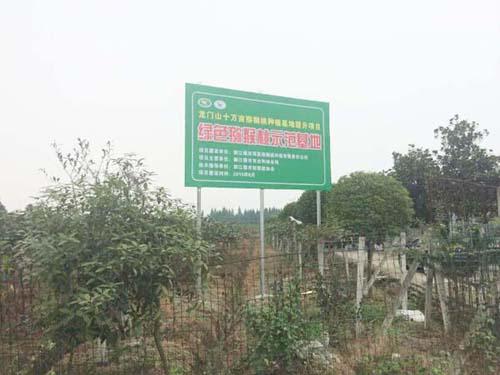 红阳猕猴桃种植示范基地